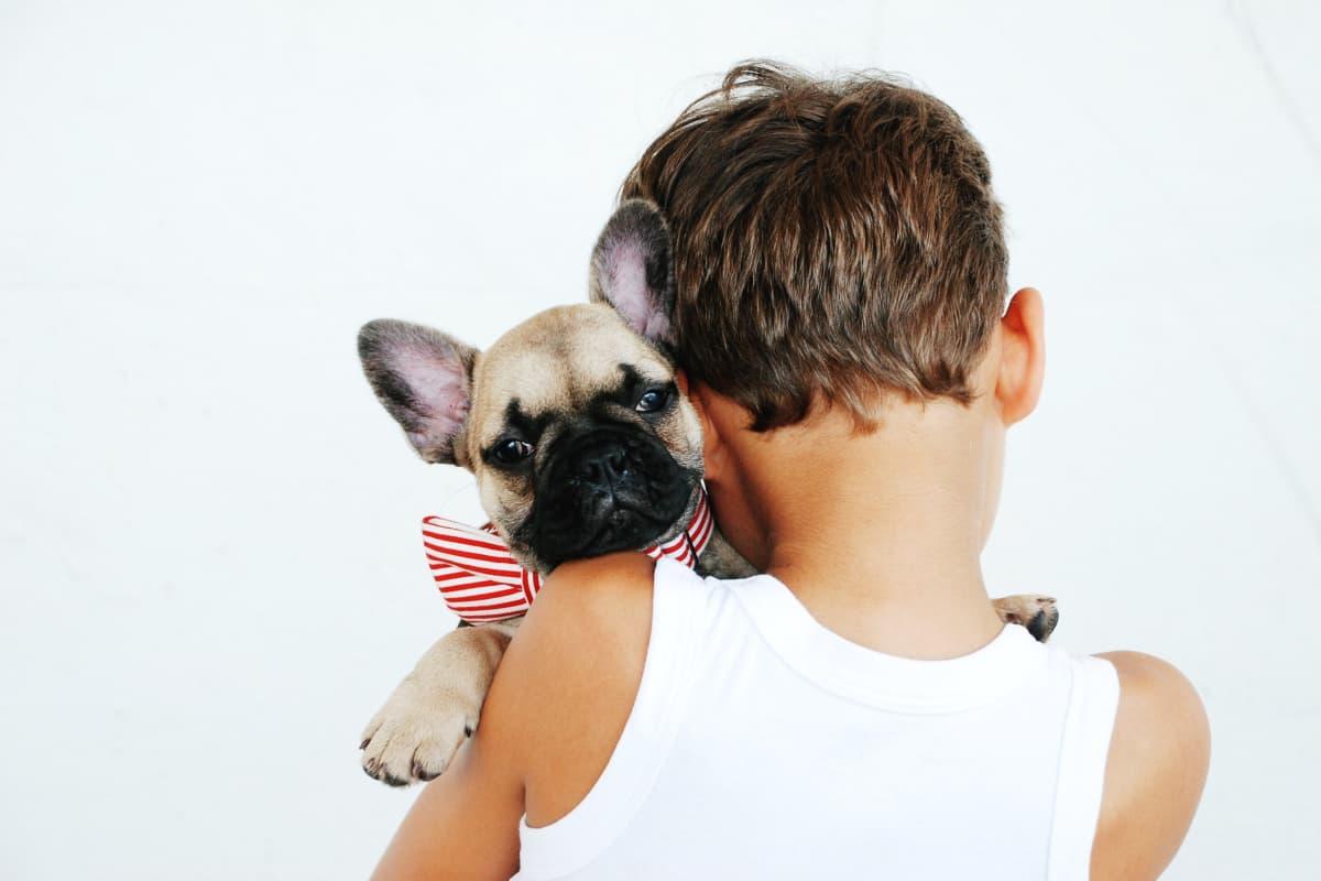 As 8 melhores raças de cachorro para família e crianças