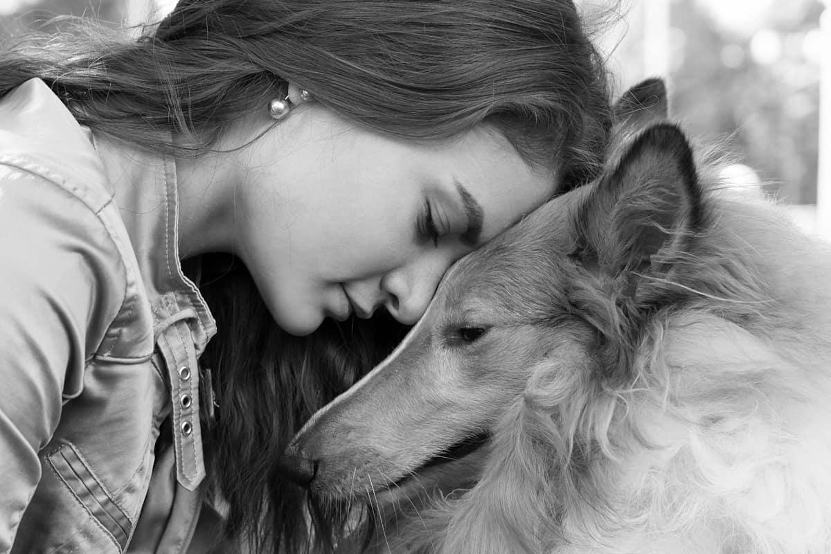 Cachorro carinhoso com garota