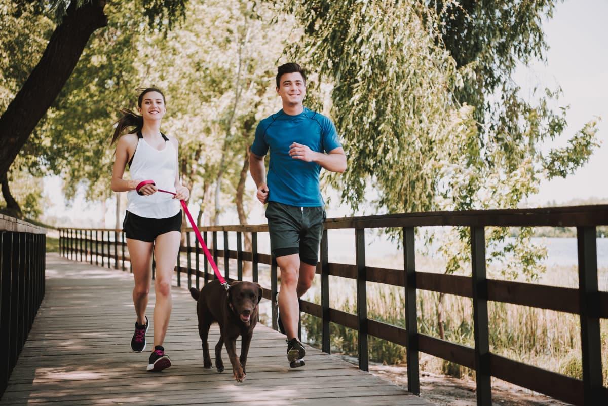 Cachorro e duas pessoas correndo